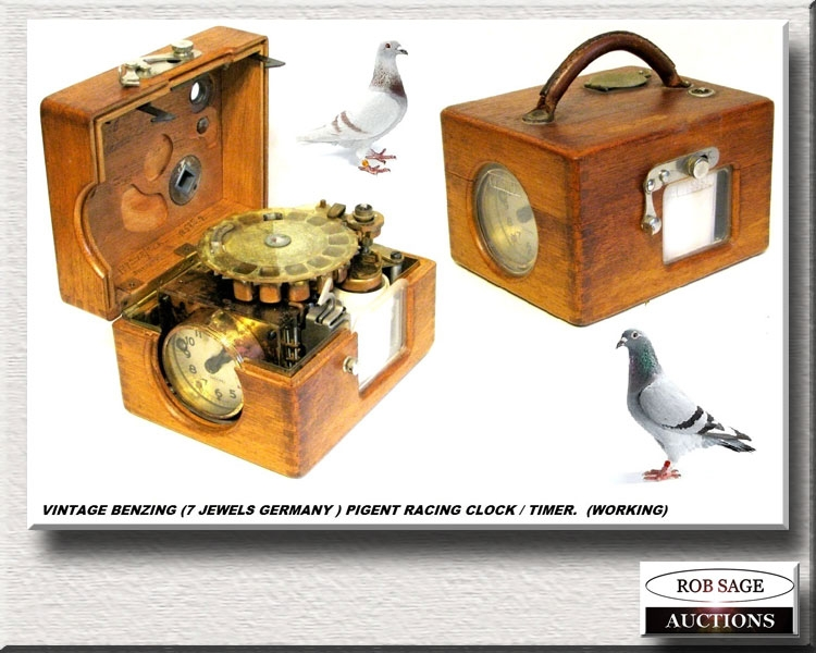Pigeon Racing Timer