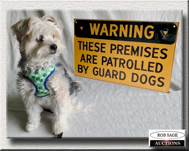 My Guard Dog!